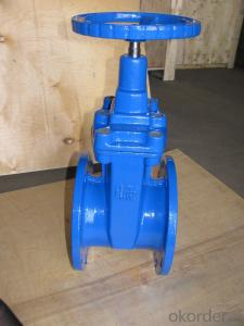 Gate Valve of DCI Ductile Iron with Stainless Steel Mesh