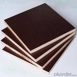 ZNSJ phenolic film faced plywood China exporter