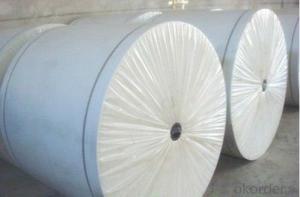 Spunbond Nonwoven Polyester Mat of Long Fiber