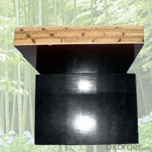 ZNSJ waterproof shutter plywood for bridge construction