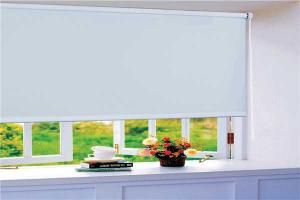 Sunscreen Roller Blind Curtaion Used For Office