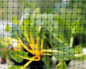 Plastic Deer Fence Net /25g Plastic Mesh
