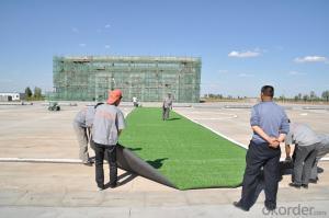 Standard Design Sports Turf Artificial Grass