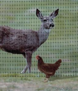 PP Plastic/ Deer Netting for Animals with Virgin Material