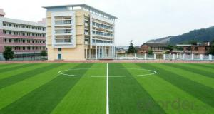 Artificial Turf Grass For Sport Equipment