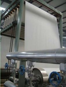 Nonwoven Polyester Mat of Staple Fiber Filament