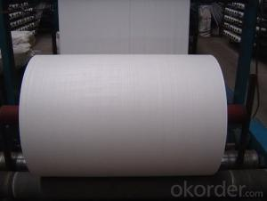 Nonwoven Polyester Mat of Short Fiber Filament