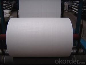 Nonwoven Polyester Mat of Short Fiber Filament