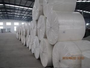 Nonwoven Polyester Mat of Staple Fiber Filament