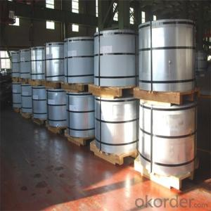 Prime Quality Electrolytic Tinplate for Metal Containers Use  0.30mm Thickness