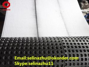 Plastic Dimple Drainage Water Treatment Material
