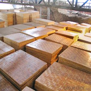 ZNSJ bamboo container soleplate China supplier