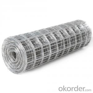 Galvanized Welded Wire Mesh Roll with Different Sizes