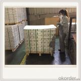 MG9995 Magnesium Alloy Ingot Plate Good Quality Ingot