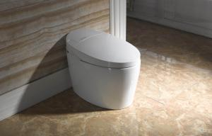 Efficiency Toilet  2380B no water tank Front Cleaning