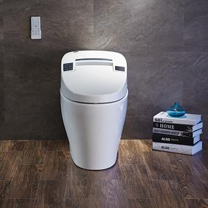 Efficiency Toilet  1280 Mobile drying Massage cleaning
