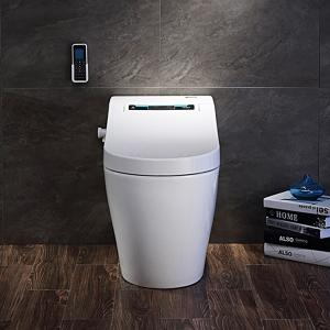 Efficiency Toilet  3100 Warm wind adjustment Massage cleaning