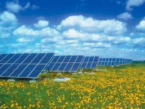 190W Solar Energy Products OEM Solar Modules