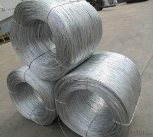 Electro Galvanized Binding Wire in Competitive Price And High Quality