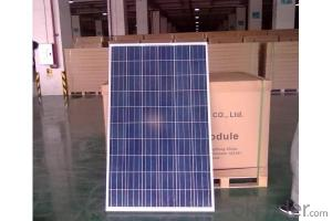 CE and TUV Approved 10W Poly Solar Panel