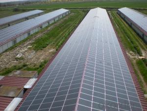 Monocrystalline Silicon Solar Panel 25w