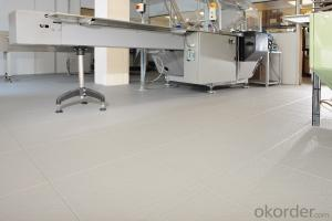 ESD PVC Flooring/Marble Look PVC Floor Tile