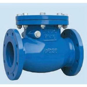 CHECK VALVE SWING DUCTILE IRON/ WCB DN40- DN600