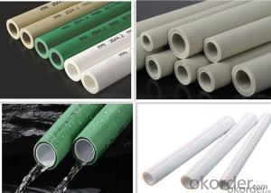 PPR Plastic Pipe China Professional Pipe Supplier HIGH QUALITY