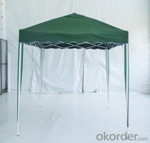 Buy Best Quality Folding Canopy Economic 3x3m F002