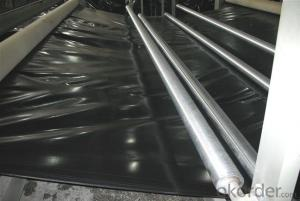 HDPE Geomembrane for Fish Farm Pond Lake Dam Price
