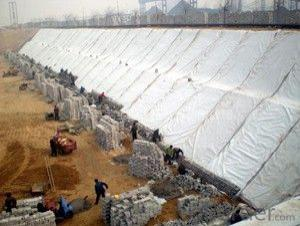 Plastic Woven Geotextile for Dam with CE