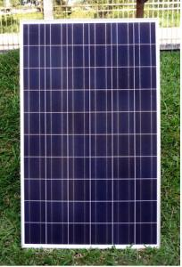 CNBM Poly 175W Solar Panel with TUV UL CE Certificate For Residential