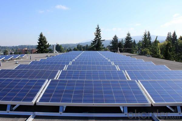 240-250W PV Polycrystaline Solar Moduels 12V & 24V