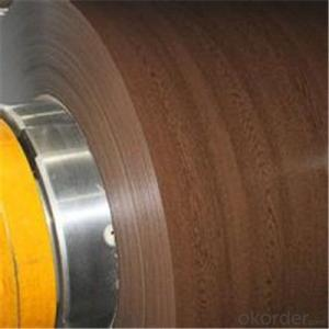 Wood Pattern Printed Galvanized PPGI Steel Coils