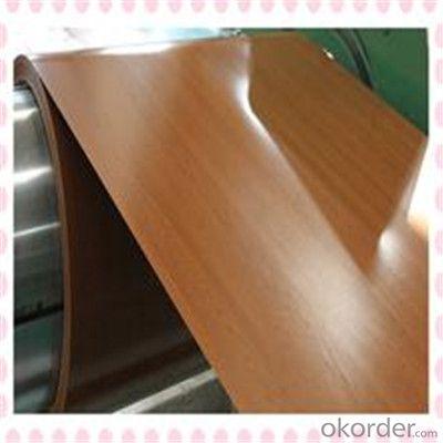 Wood Pattern Coated Galvanized PPGI Steel Plates
