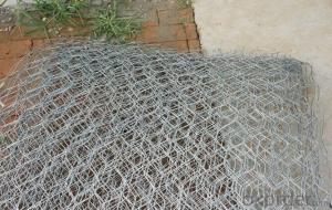 Gabion Stone Cage(SGS CERTIFIED FACTORY)