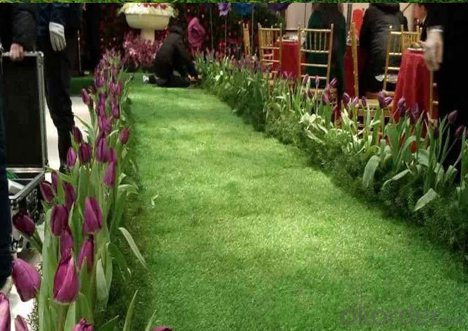 House Design Artificial Green Grass Artificial Grass