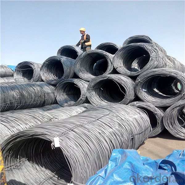 Steel Wire Rod Coil Low Carbon different grade