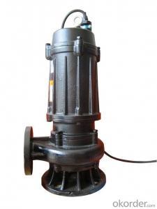 Water Pump Slurry Sewage Submersible Water Pump