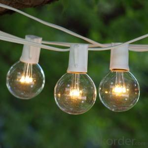 G50 Patio Globe String Lights with 25 Bulbs for Outdoor Decoration(Black Wire)
