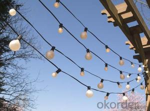 G50 Patio Globe String Lights with 25 Bulbs for Decoration (Black Wire)