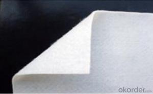 White Isolation Non-woven Geotextile Fabric For Road ,Costom Size