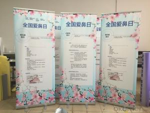 BST1-4 80*200CM roll up banner stand /pull up banner stand /roll up display stand