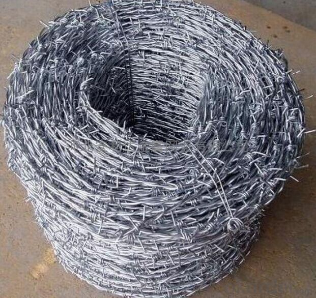 Electro Galvanized Barbed Wire for Fence