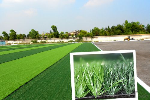 Artificial grass for Soccer high quality Artificial grass truf2016