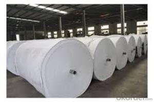 Staple Fiber Needle Punched Non Woven Geotextile Fabric