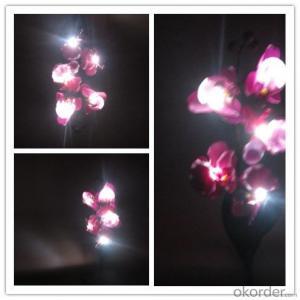 Multi-color Butterfly Orchid Solar Flower Garden Light