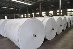 High Strength Multifilament Non Woven Geotextile Fabric