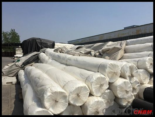 Polyester Continuous Filament  Non Woven Geotextile from China