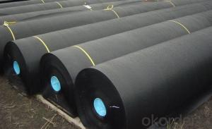 Waterproof Flat Sheet Geo Membrane 2 Mm Geomembrane Price